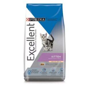 EXCELLENT CAT KITTEN